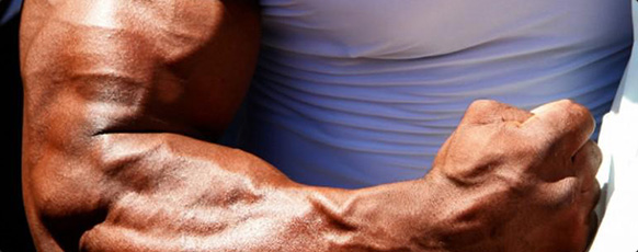 Bigger Arms   7 Secrets Of Bigger Biceps From The Pros